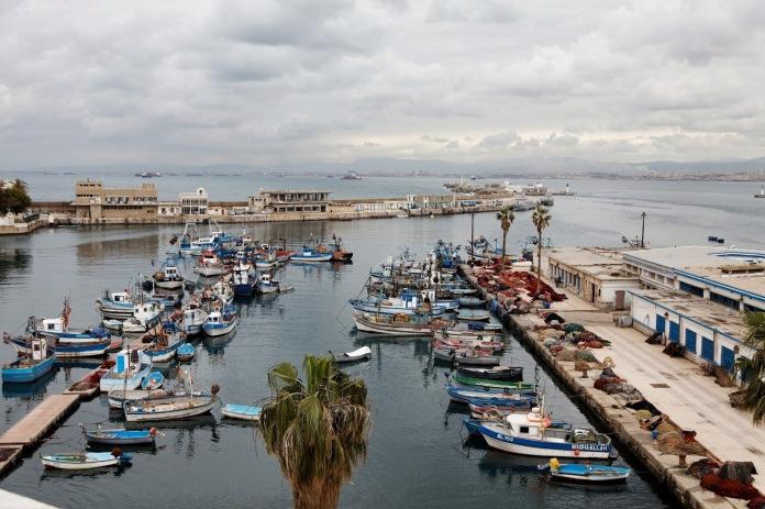 Algeria 24