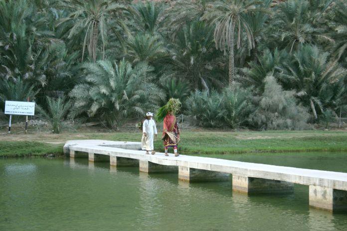 Wadi_Shab_(13)