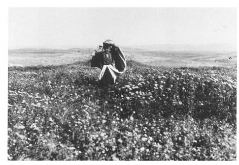 springtime in palestine 1918 - 1935