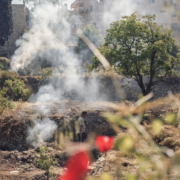 Battir, l'intifada verte