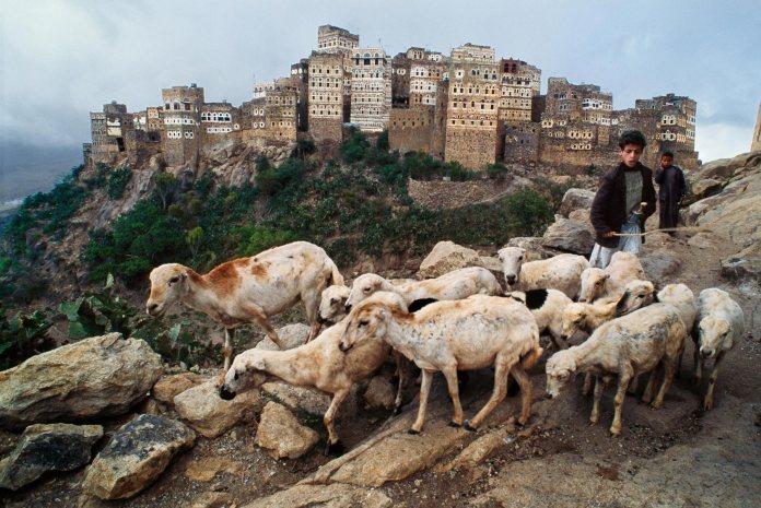 00014_18.adj, Hajjah, Yemen, 1999, final print_milan